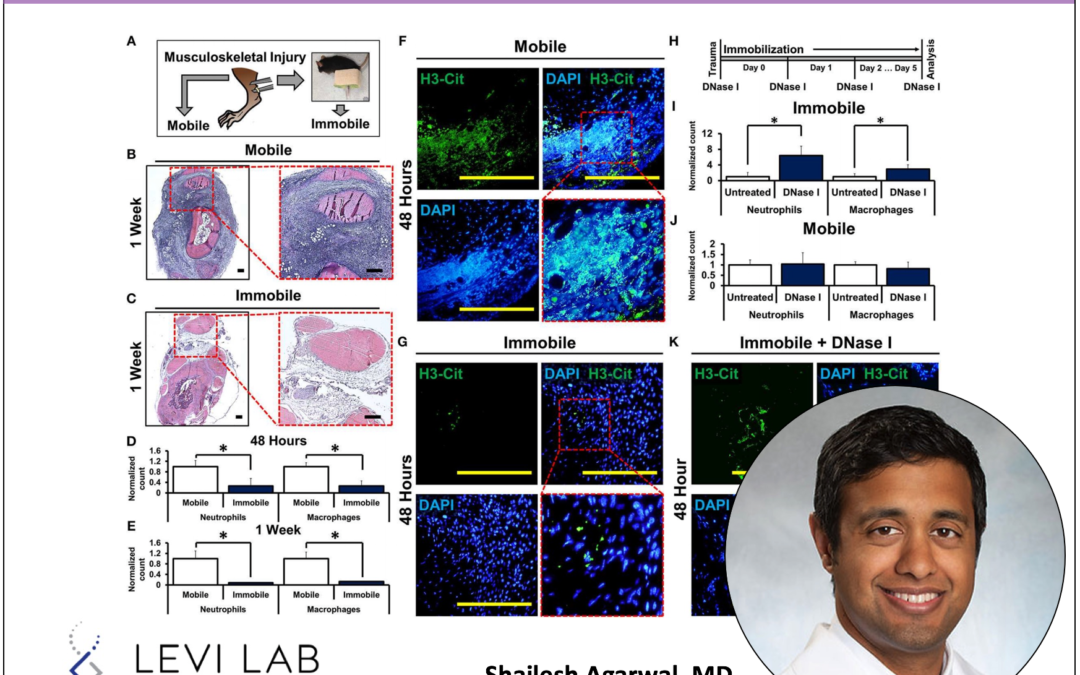 Neutrophil extracellular traps regulate heterotopic ossification - Shailesh Agarwal